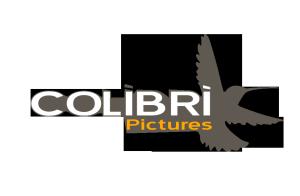 Colibri Pictures architectural